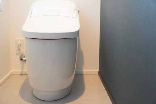 タンクレストイレから逆流臭がする時の原因と防ぐ方法